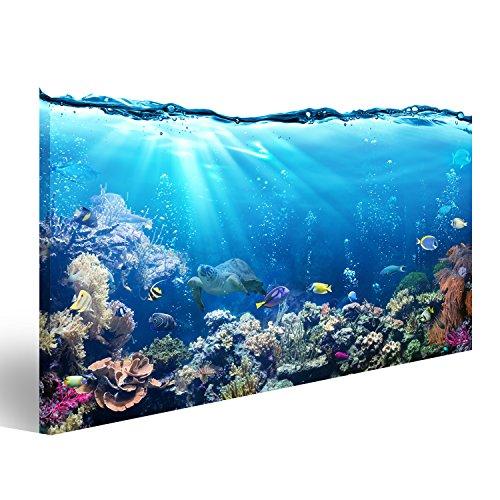 islandburner Bild Bilder auf Leinwand Unterwasser-Szene mit Riff und tropischen Fischen Wandbild Leinwandbild Poster DYK