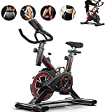 Cyclette Indoor Cardio Workout Studio Cicli Verticali con Cardiofrequenzimetro, Volano, Trasmissione A Cinghia, Resistenza Infinita, Display LCD, Attrezzatura da Palestra Domestica Ciclismo