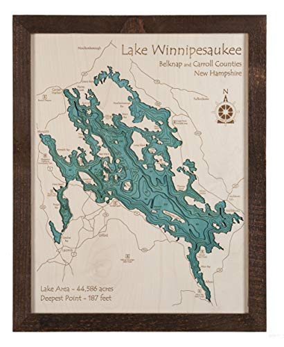 Lake Texoma - Grayson County - TX - 3D Map 14 x 18 in (Brown Rustic Frame with Glass) - Laser Carved Wood Nautical Chart and Topographic Depth map.