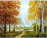 GEZHF Pintura al óleo DIY de bosque y barco pintura por números para lienzo adultos niños decoración set de regalo pintura acrílica 40 x 50 cm (sin marco)