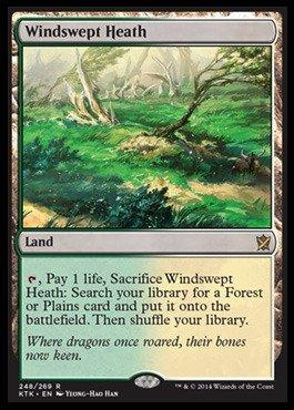 Magic The Gathering - Windswept Heath (248/269) - Khans of Tarkir - Foil