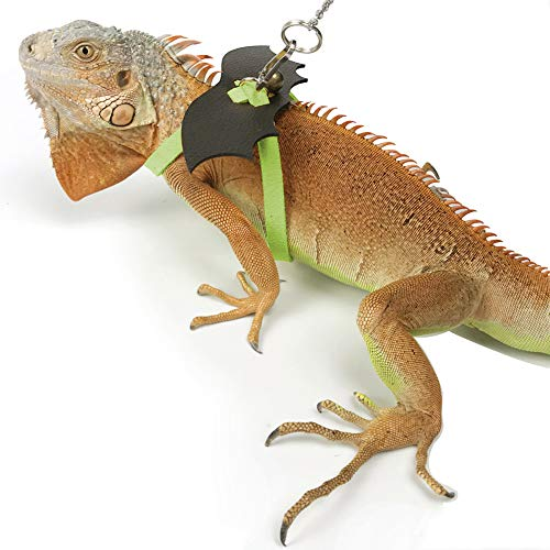 Lesencen Leather Harness Leash for Lizard Bearded Dragon/Iguanas/Anoles Reptile Small Animals with Wing & Pivoting Buckle (M)
