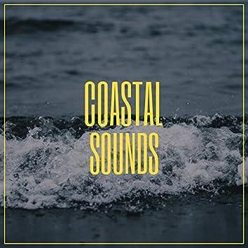 """ Meditative Coastal Sounds """