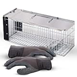 Best Squirrel Traps - SAFETRAP Animal Trap for Small Animals | One-Door Review