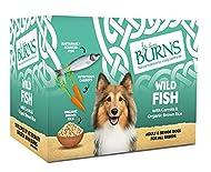 Burns Pet Natural Nutrition Adult & Senior Wet Dog Food Wild Fish, Carrots & Organic Brown Rice 6 x ...
