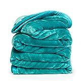 Clara Clark Faux Fur Heavy Mink Ultra Plush Cozy Warm Bed Blanket, Queen/King, Teal