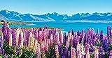 1000 pièces de Puzzles en Bois de Haute qualité Motif de Fleurs de Lupin de Nouvelle-Zélande Jeux passionnants pour Les Adultes et Les Enfants