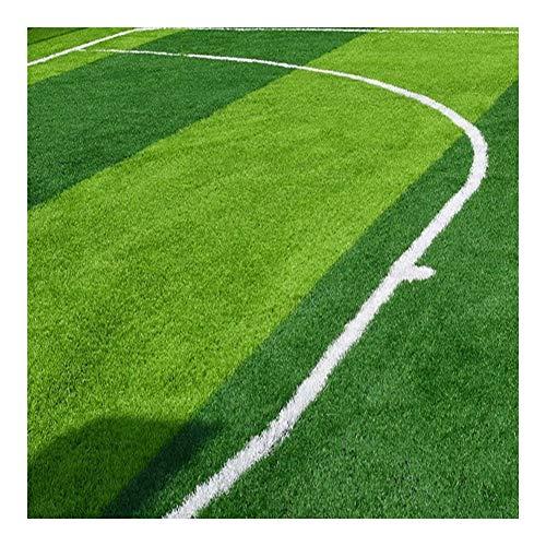 Cesped Futbol