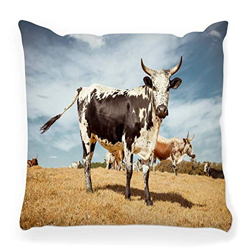 LXJ-CQ Kissenbezug 18x18 Nguni Stehfeld Südafrika Afrikanische Rinder Kühe Farm Landwirtschaft Tiere Vieh Kissenbezug