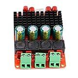 PYROJEWEL Tablero del Amplificador de Audio, TPA3116 50W * 2...