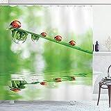 ABAKUHAUS Natur Duschvorhang, Marienkäfer auf Wasser Bild, mit 12 Ringe Set Wasserdicht Stielvoll Modern Farbfest & Schimmel Resistent, 175x200 cm, Grün Rot