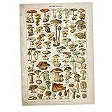 Lankater Vintage Blumenleinwanddruck Poster Antike Kunst