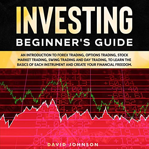 Investing Beginner's Guide audiobook cover art