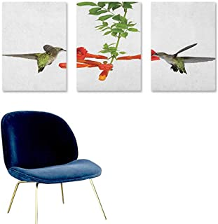 Agoza Hummingbirds Canvas Pictures Two Hummingbirds Sipping Nectar from a Trumpet Vine Blossoms Summertime Oil Canvas Painting Wall Art 3 Panels 24x47inch Red Black Green