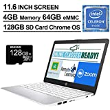 2020 Newest HP Stream 11.6 Inch Laptop, Intel Celeron N4000 up to 2.6 GHz, 4GB DDR4 RAM, 64GB eMMC, WiFi, Bluetooth, Webcam, Chrome OS, Silver + NexiGo 128GB MicroSD Card Bundle