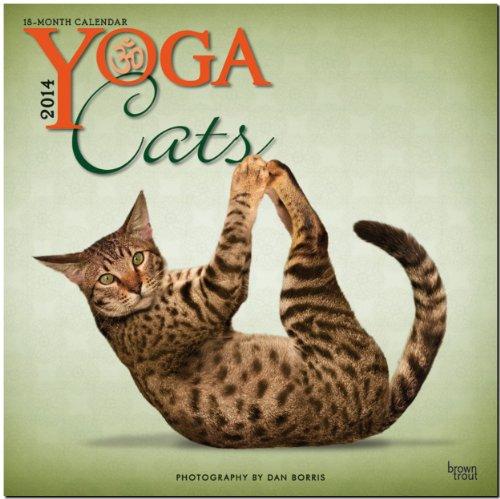 Yoga Cats 2014 - Joga-Katzen: Original BrownTrout-Kalender [Mehrsprachig] [Kalender]