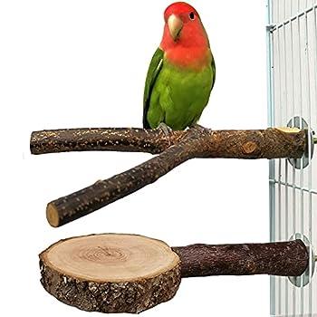 Joody 2 PCS Perchoirs à oiseaux branches d'oiseaux en bois naturel et plateforme de support pour cage, accessoires de cage à oiseaux jouets de broyage de pattes pour petites Conure Parakeet Cockatiels