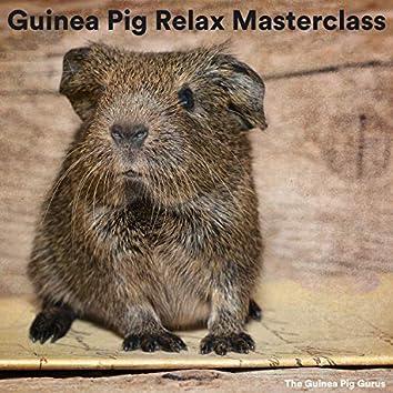 Guinea Pig Relax Masterclass