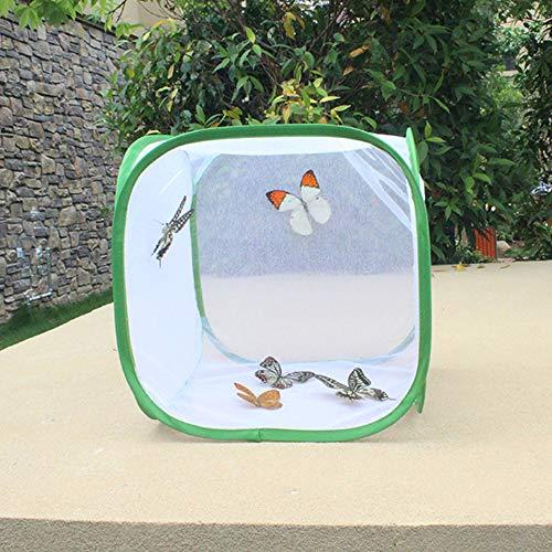 Leeofty Zusammenklappbarer Insekten- und Schmetterlingslebensraum-Käfig Terrarium Pop-up Insektensicherer weißgrüner durchscheinender Polyesterboden