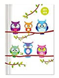 Collegetimer Owls 2017/2018 - Schülerkalender A5 - Weekly - 224 Seiten