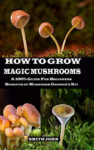 HOW TO GROW MAGIC MUSHROOMS: A 100% Guide for Beginners. Benefits of Mushroom Grower's kit