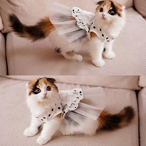 i Pet Princess Floral Cat Party Bridal Wedding Dress Small Dog Flower Tutu Ball Gown Puppy Dot Skirt Doggy Photo Apparel Stretchy Clothes Mesh Costume for Spring Summer Wear (White  Medium)