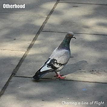 Charting a Line of Flight