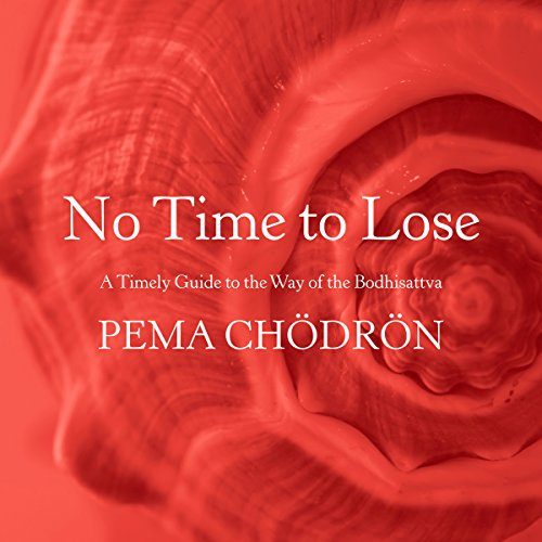 No Time to Lose audiobook cover art