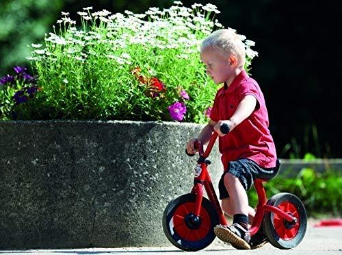 Mini Viking BikeRunner mit extra tiefem Einstieg (Alter: 2-4 Jahre / Lenkerhöhe: 42 cm / Sitzhöhe: 31 cm) von Winther