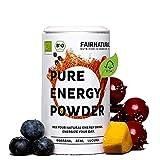 BIO Bebida energetica en polvo con Guarana & Bio Acai [Bio Booster de Alemania] ' Alternativa saludable y vegana a las bebidas energéticas y el café ' De superalimentos ricos en vitaminas (100g)
