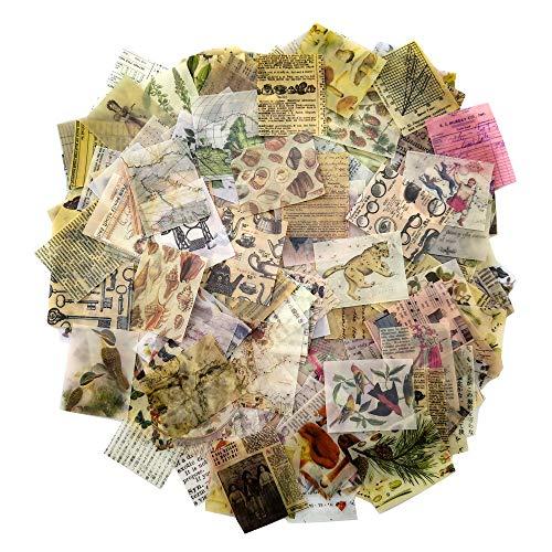 366PCS Vintage Scrapbooking DIY Material Paper Pack Animal Floral News Paper...