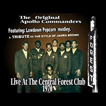 Lowdown Popcorn Medley ( A Tribute in the Style of James Brown) [Live At the Central Forest Club 1970]