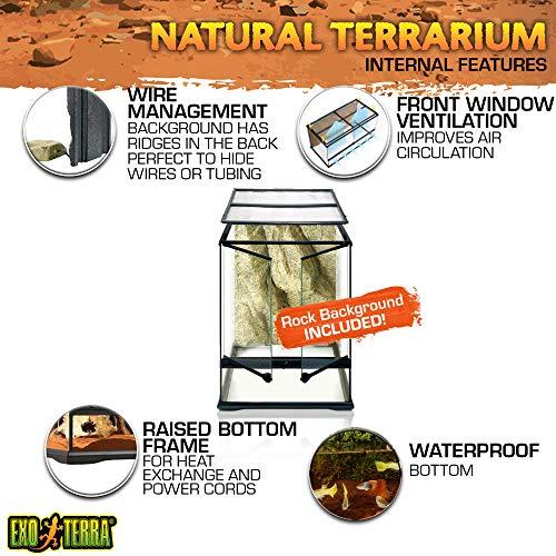 Exo Terra Terraristik Starter Set Regenwald-Terrarium, mittelgroß - 6