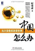 中国怎么办:当次贷危机改变世界