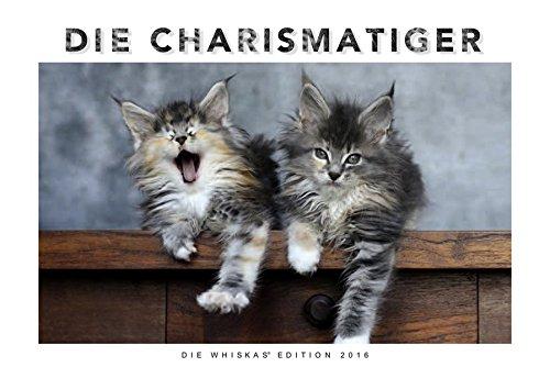 Whiskas Katzenkalender 2016