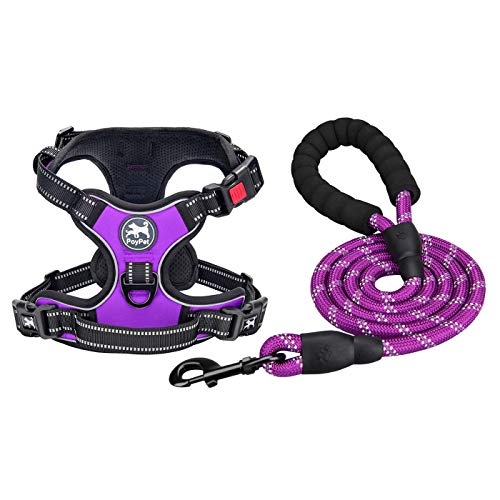PoyPet Dog Harness and Leash Combo, Escape Proof No Pull Vest Harness, Reflective Adjustable Soft Padded Pet Harness with Handle for Small to Large Dogs(Purple,S)