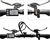 Zoom IMG-1 dioche kit controller motore 36v