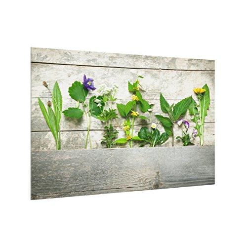 Bilderwelten Panel antisalpicaduras de Cristal - Medicinal and Wild Herbs - Horizontal...