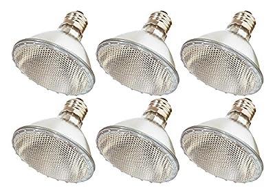 60PAR30/FL 120V - 60 Watt High Output (75W Replacement) PAR30 Flood Short Neck - 120 Volt Halogen Light Bulbs