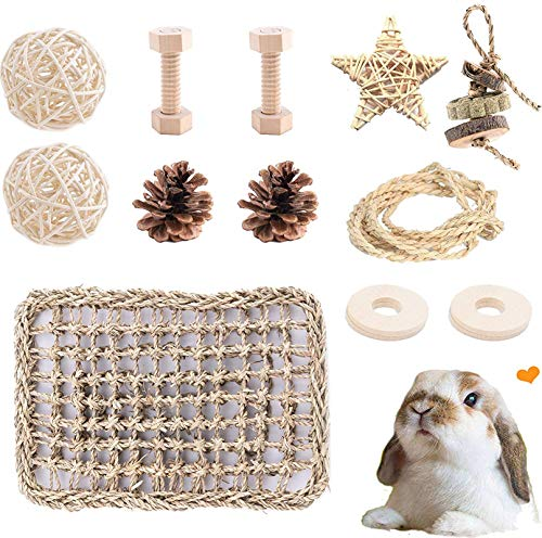 VCZONE Seagrass Protector Mat with Tooth Chew Toys for Bunny, Chinchilla, Guinea Pigs, Hamsters Teeth Grinding (Small)
