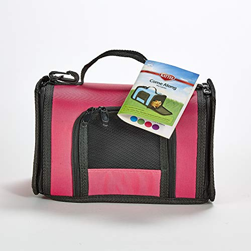 Kaytee Come Along Pet Carrier for Small Animals