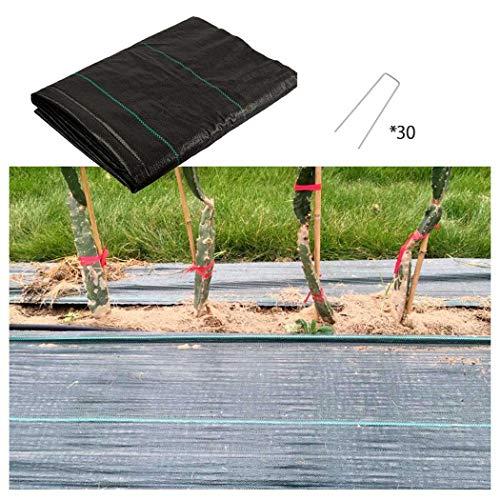 Barrière de Protection Contre les Mauvaises Herbes, 100g/m² Fabric - UV Stabilised en Polypropylène Tressé Résistant pour le Jardin, Paysage, l'allée Landscape Ground Cover Membrane ( Size : 1m*10m )