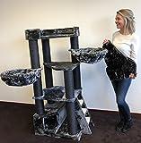 Arbre à chat géant grand chat XXL Corner Coon Blackline Gris foncé pour gros chats Produit de qualité RHRQuality