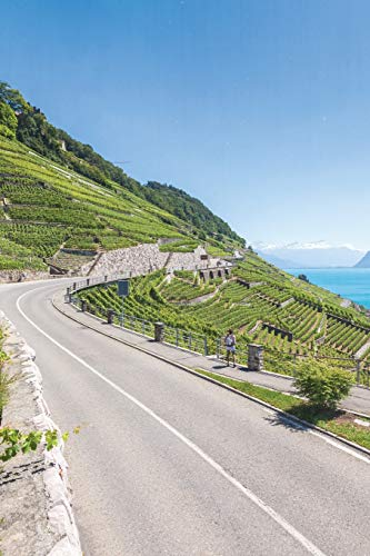 Notebear: Vineyards In Lavaux Region - Terrasses De Lavaux Terraces, Switz Journal (Travel Notebook & Diary with Alternate Blank & Lined Pages, Band 263)