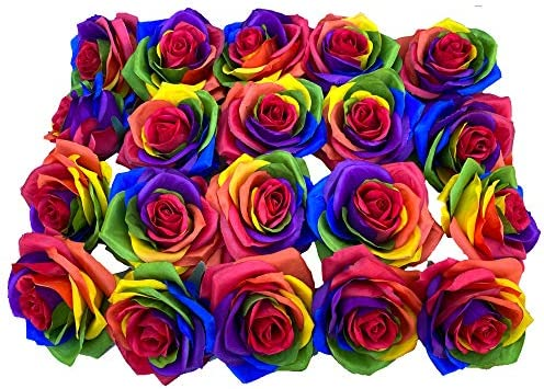DALAMODA 20pcs Artificial Rainbow Roses Heads Silk Flower Artificial Rose Flowers DIY Any Craft product image