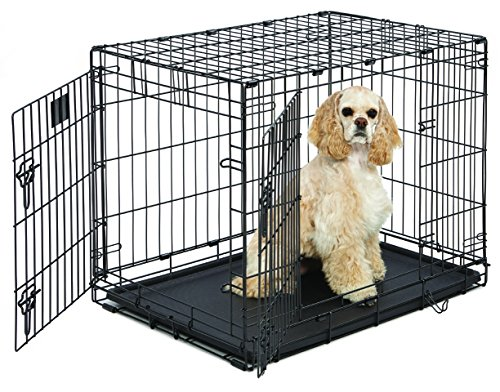 Medium Dog Crate | MidWest Life Stages 30' Double Door Folding Metal Dog Crate | Divider Panel, Floor Protecting Feet & Dog Tray | 31.375L x 22.5W x 23.5H Inches, Medium Dog Breed