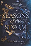 Image of Seasons of the Storm (Seasons of the Storm, 1)