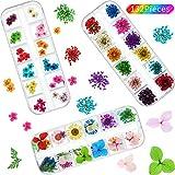 132 Piezas Flor Seca de Uñas Flor Seca Arte de Uñas 3D Apliques de Uñas Arte de Uñas Accesorio para Decoración de Uñas (Margarita Estrellada y Cinco Flores)