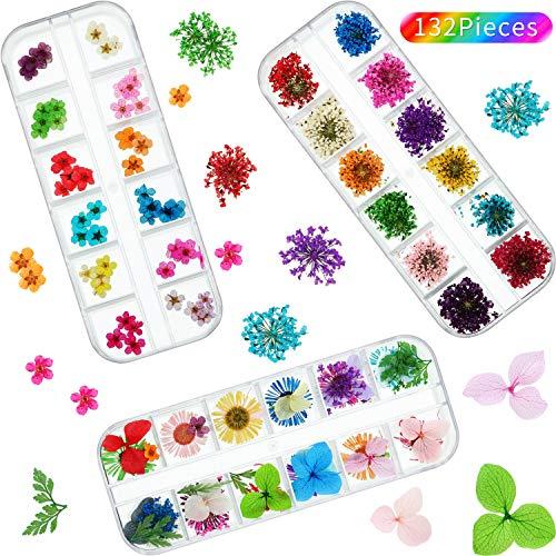 Conjunto de arte de uñas de flores secas: el paquete contiene 60 flores secas estrelladas (12 colores), 60 cinco flores secas (12 colores) y 12 flores secas de margarita (12 colores), que se envasan en macetas de plástico transparente con tapa superi...