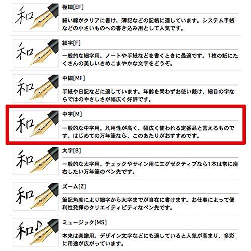 セーラー万年筆万年筆プロフィットスタンダードブラック中字11-1219-420